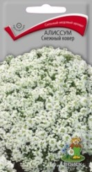 Алиссум Снежный ковер однол. 0,3гр. (Поиск)