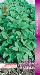 Пряные травы, Аптека Мелисса лимонная Кадриль 0,5гр. (авт.серия)  (Поиск)