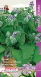 Пряные травы, Аптека Бораго (Огуречная трава) Гном  0,5гр. (авт.серия)  (Поиск)