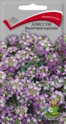 Алиссум Фиолетовая королева  однол. 0,3гр. (Поиск)