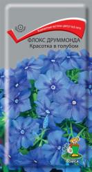 Флокс друммонда  Красотка в голубом однол. 0,1гр. (Поиск)