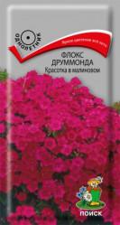 Флокс друммонда  Красотка в малиновом однол. 0,1гр. (Поиск)
