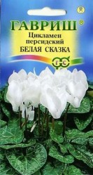 Цикламен персидский Белая сказка 3шт. комн.раст. (Гавриш)