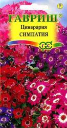 Цинерария цветущ.гибрид.  Симпатия 10шт. комн.раст. (Гавриш)