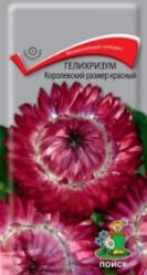 Гелихризум Королевский размер Красный однол. 0,1гр. (Поиск)