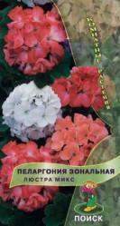 Пеларгония зональная Люстра Микс 5шт. (комн.раст.)  (Поиск)