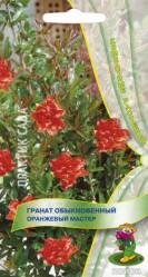 Гранат обыкновенный Оранжевый мастер 5шт. (комн.раст.)  (Поиск)