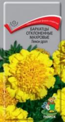 Бархатцы Лемон Дроп откл.махр. 0,4гр. (Поиск)