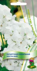 Пеларгония зональная Люстра Вайт 5шт. (комн.раст.)  (Поиск)