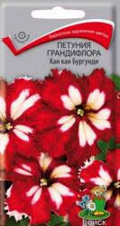 Петуния Кан Кан Бургунди 10шт.грандифлора (Поиск)