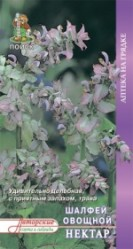 Пряные травы, Аптека Шалфей овощной Нектар  0,5гр. (авт.серия)  (Поиск)