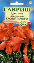 Цикламен персидский Красный партизан 3шт. комн.раст. (Гавриш)