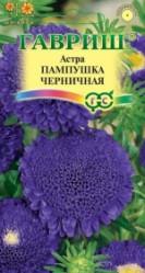 Астра Пампушка черничная 0,3гр. (Гавриш)