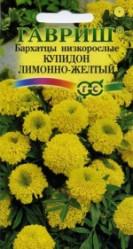 Бархатцы Купидон лимонно-желтый 0,05гр. однол. (Гавриш)
