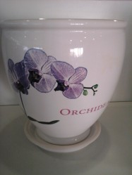 Г.кер.  Бутон 3,0л. Бел Orchidea 008-0-108 (Укр./эльза)