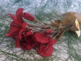 Цветы Dinastel  Лилейник 62см  GT0204235Q
