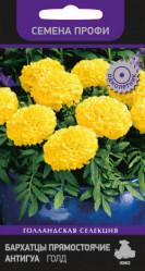 Однолетние цветы - Бархатцы Антигуа Голд прям. (Семена Профи) 15шт. (Поиск)