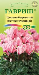 Комнатные цветы - Цикламен махровый Восторг розовый 3шт. Элитная клумба Н15 (Гавриш)