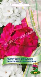 Пеларгония зональная Династия Бело-фиолетовая 5шт. (комн.раст.)  (Поиск)