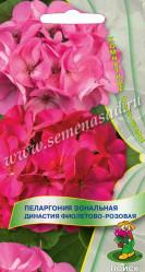 Пеларгония зональная Династия Фиолетово-розовая 5шт. (комн.раст.)  (Поиск)