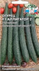Огурцы Аллигатор 2 F1(Китайский болезнеустойчивый) 0,2г (Седек)