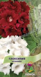 Глоксиния Жозефина 5шт. (комн.раст.)  (Поиск)