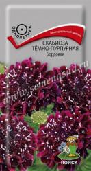 Скабиоза темно-пурпурная Бордовая однол. 0,2гр. (Поиск)